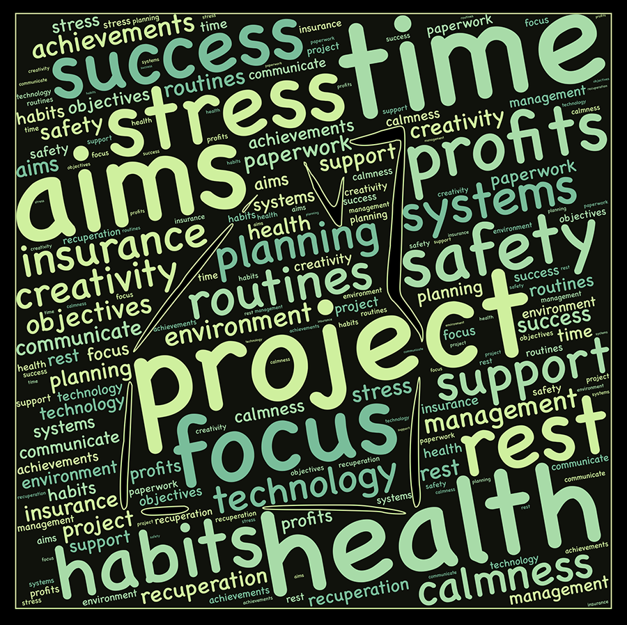 Word cloud title Project.  Other words include focus, aims, habits, stress, safety, objectives etc.